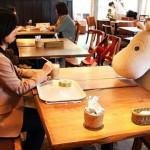 Cafe quên cô đơn ở Nhật Bản