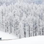 PyeongChang – Thế vận hội Olympic mùa đông 2018