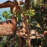 Bữa ăn trên ngọn cây độc đáo tại đảo Koh Kood