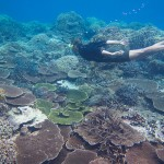 Khám phá đảo Okinawa xinh đẹp