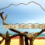 Tìm thanh bình nơi bãi biển Puka Shell
