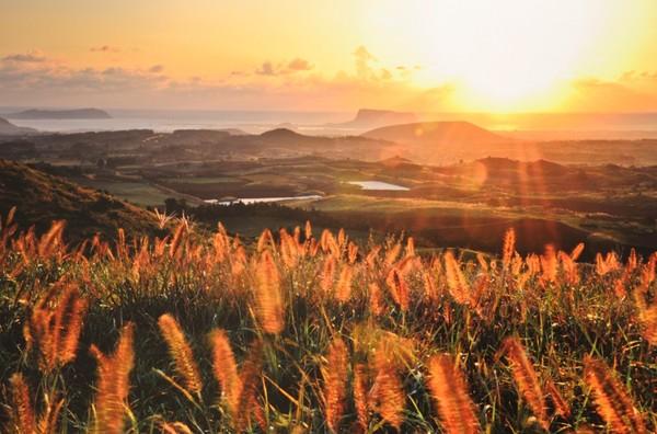 gió đảo Jeju