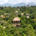 Trải nghiệm tuyệt vời tại khách sạn vườn treo Ubud