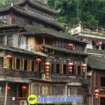 phuong-hoang-co-tran2