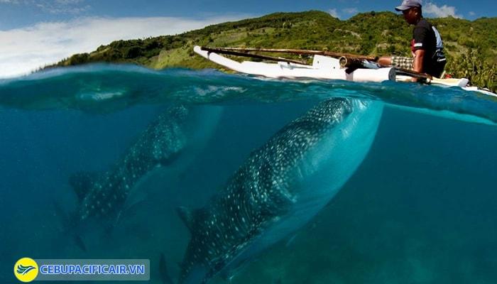 Philipines cónhiều cảnh quan thiên nhiên đẹp