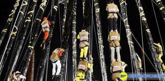 Lễ hội trèo cột