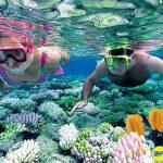 Vườn quốc gia Tubbataha Reef