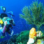 Lặn biển ở Bali