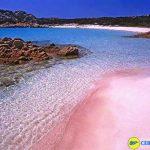 pantai pink-min