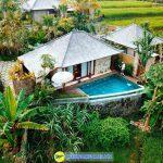 Nau Villa Ubud 2